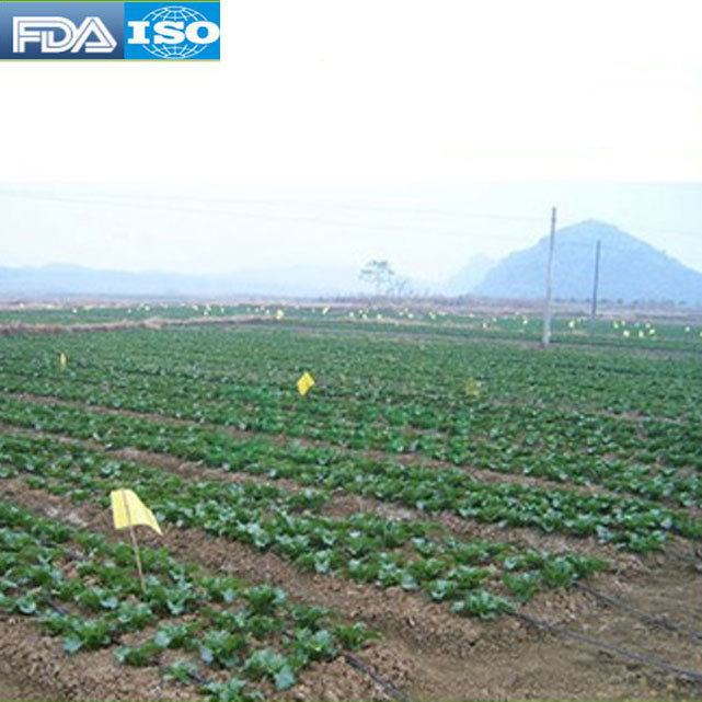 Wholesale high quality FDA potassium polyacrylate