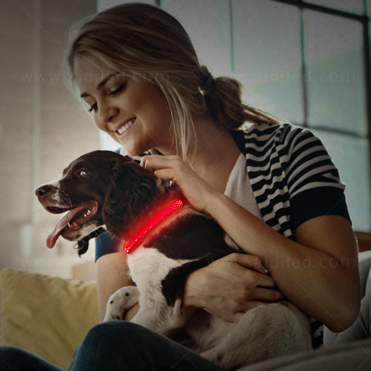 Hot sale led shining dog collar for small pets