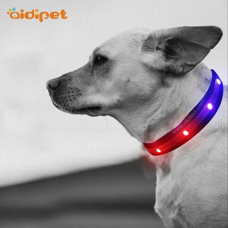 RGB Rainbow Led Dog Collar Pet Collar with Colorful Led Light Multiple Modes Flashing Dog Safety Collar Manufacturer