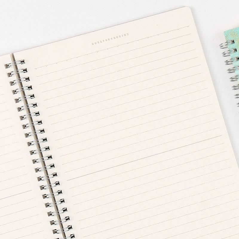 product-Dezheng-Cheap Price A5 School Writing White Lines Book Spiral Binding Notebook Cover-img-1