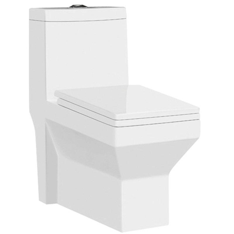 Washdown Porcelain Sanitary Ware Floor flush toilet