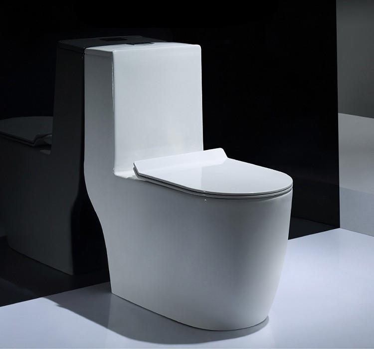 Water Ridge One Piece Dual Flush Toilet