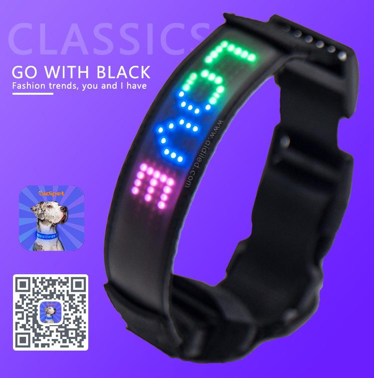 Popular Night Walk Plastic LED Screen Dog Collar