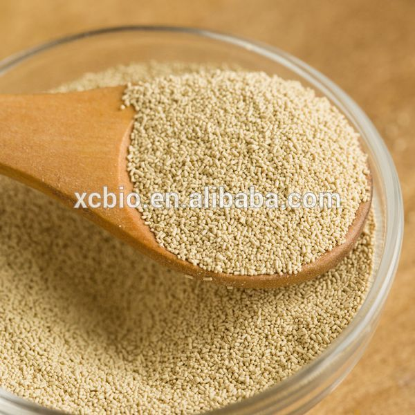 Manufacture of Nutritional Yeast Flake