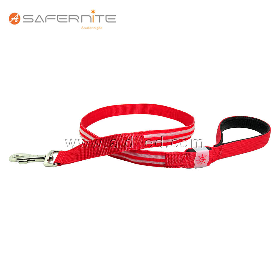 Nylon Dual line USB Rechargeable LED Light-up Dog Lead Leash