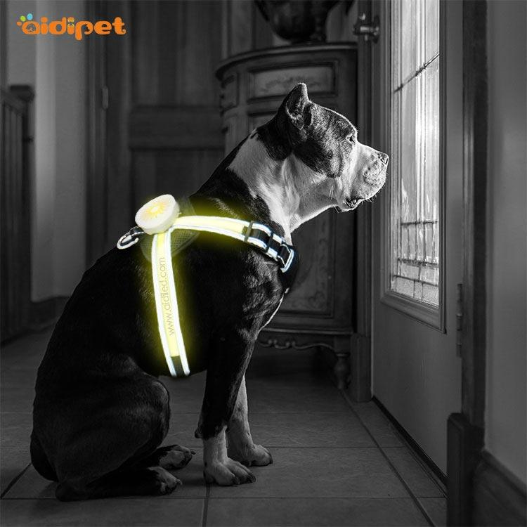 Amazon Night Walk LED Chest Strap for Dog