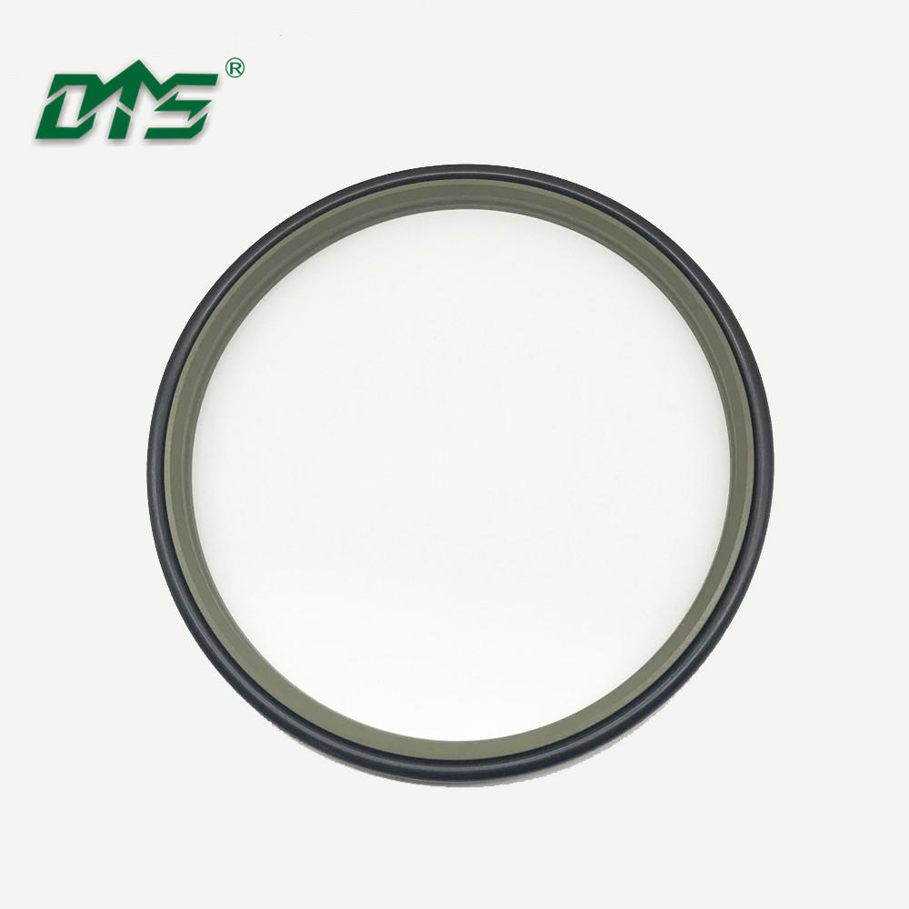Bronze PTFE excluder double acting scraper seal DPT1