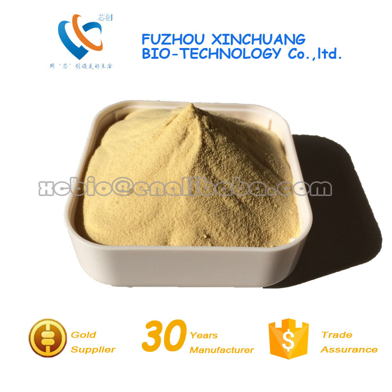 Yeast Extract MSG Replacer, Basic YE with Halal and Kosher Certification
