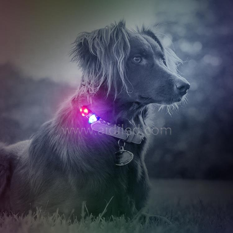 Waterproof Silicone Soft Led Lights Glowing Collar Pendant for Dog Clip-on Led Dog Collar Flashing Light Three Leds