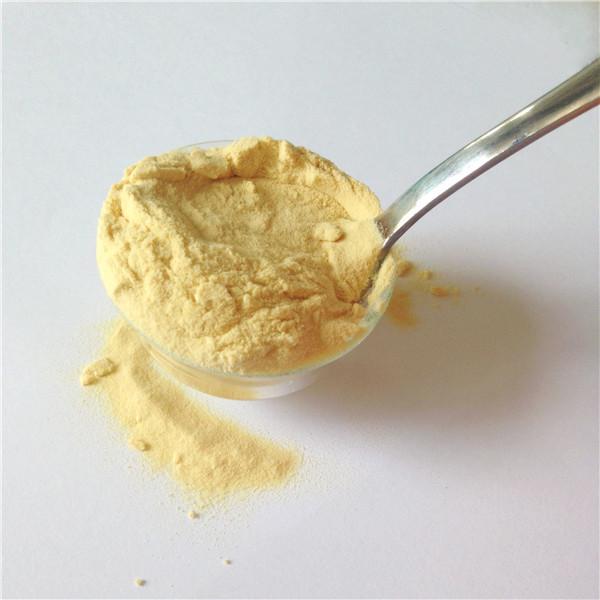 Low Salt Yeast Extract KK02, Strong Kokumi taste YE