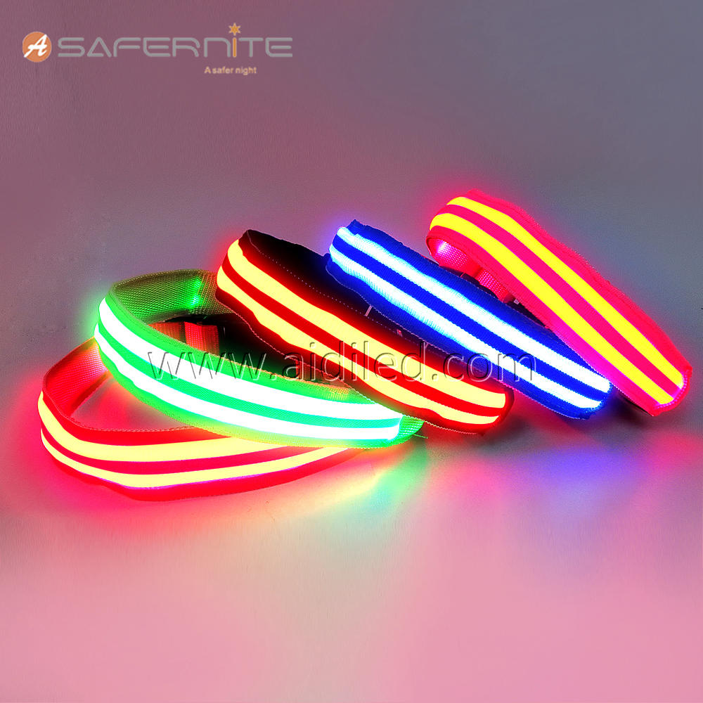 DC5-B Personalized USB Rechargeable LED Dog Collar