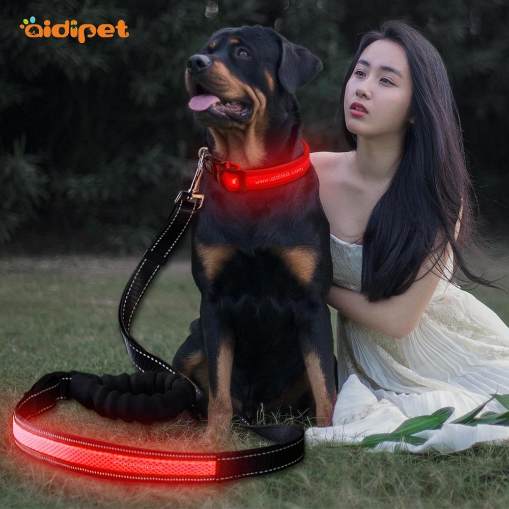 Hot sale flashing style LED Mesh Dog Leash
