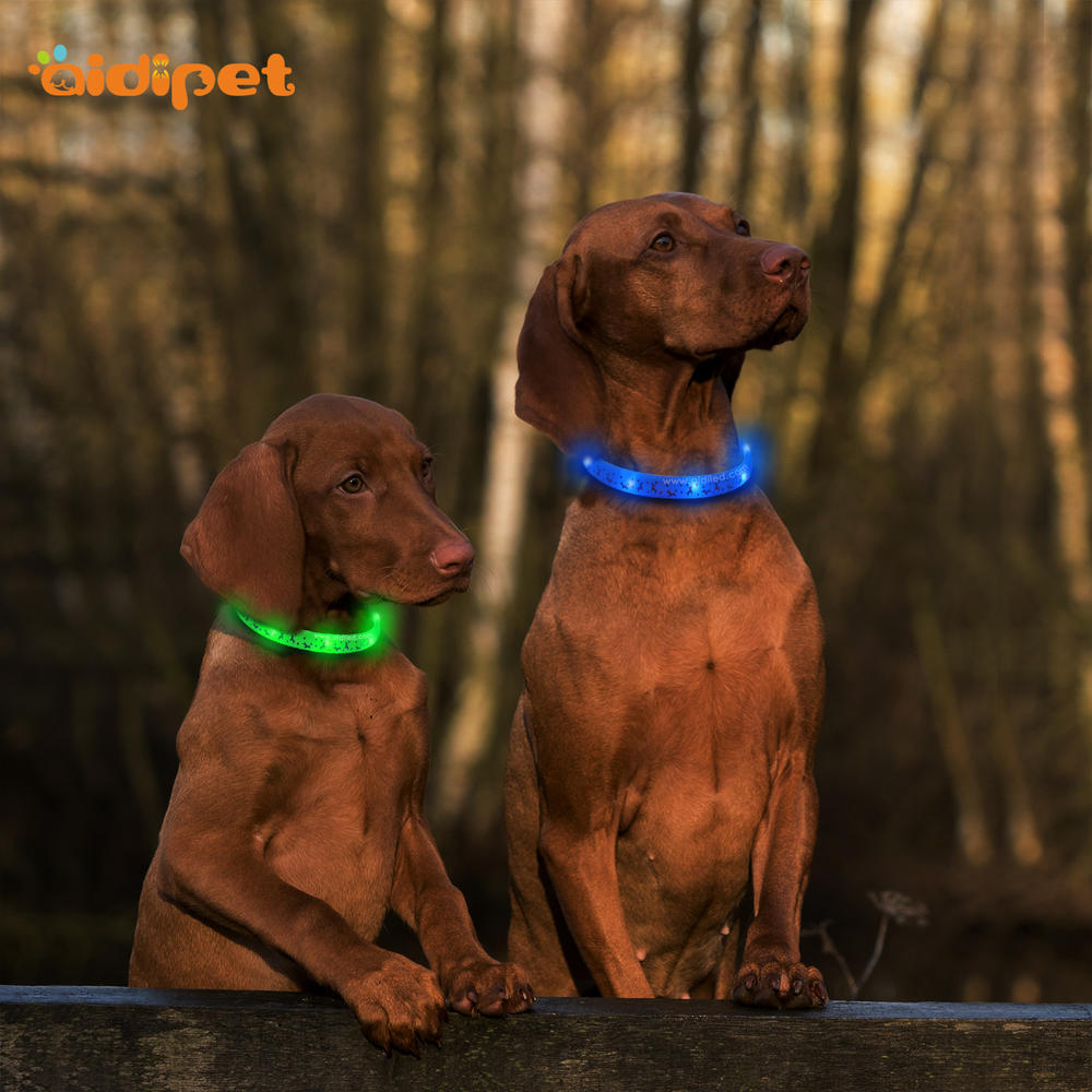 Lighting Up Pet Necklace Soft Material for Small Pup Twinkle image Led Dog Collar Christmas