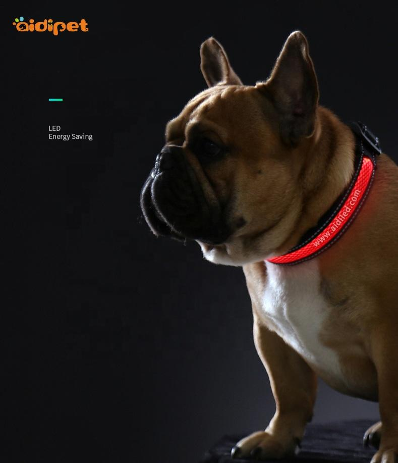 Small Waterproof Cat Dog Rechargeable Flashing Collar XS XXS Size ofBest Light Up ODM Collar for Bad Weather