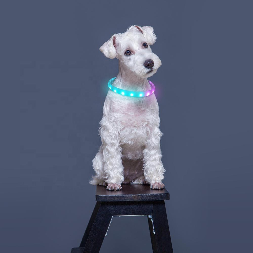 Wholesale Smart Waterproof Silicone LED Lighting Dog Collar