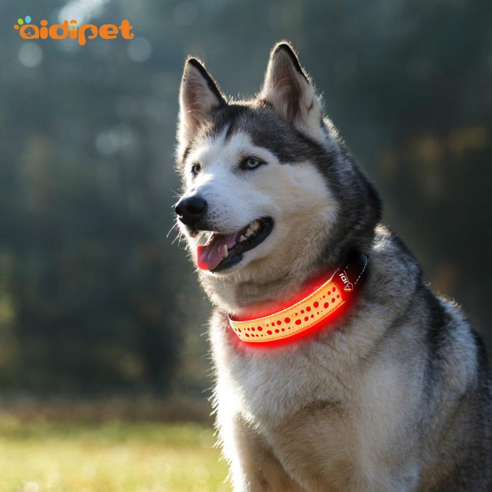 Rechargeable Adjustable hot sale Flashing Led Dog Collar