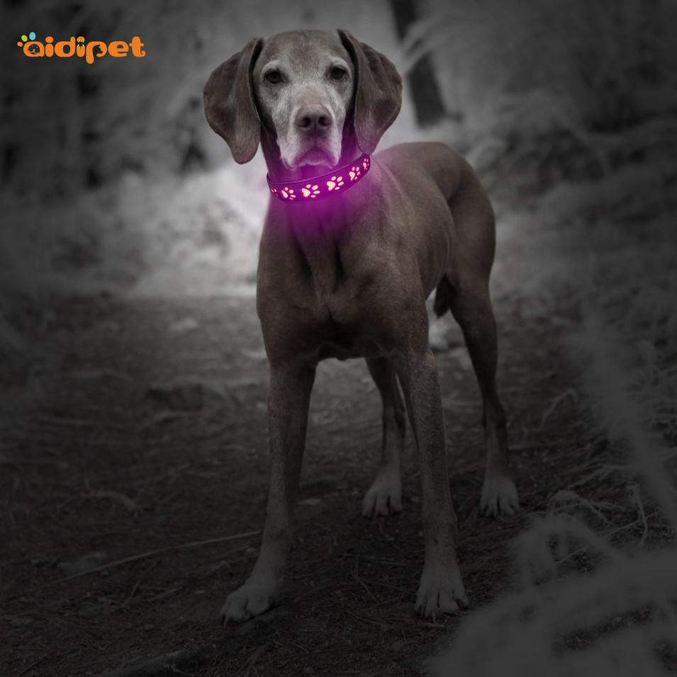 Dog Paw Hollow Printing Led Pet Collar Leash Set PU Leather Led Pet Dog Collar USB Recharging Adjustable Size