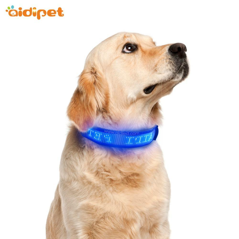 USB Rechargeable Blue Led Dog Collar Mobile Controlled Smart Pet Collar High QualityFlashing Led Collar for Dogs