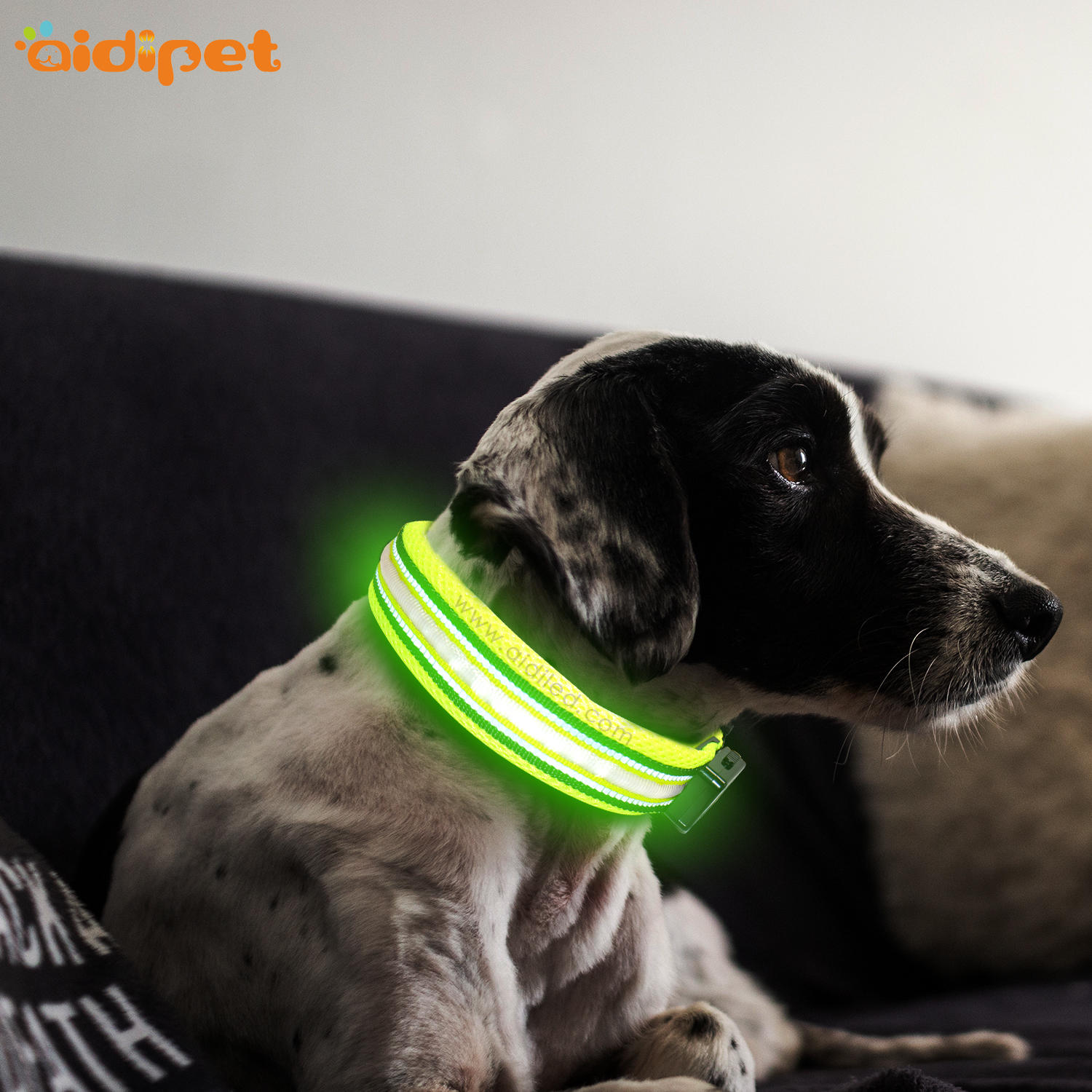 Single Optical Fiber Nylon Dog Collar for Night Safety High Quality China Collar Manufacturer Factory