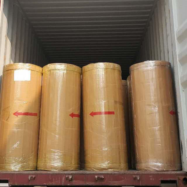 Bopp Packing Adhesive Tape Jumbo Roll for Carton Sealing