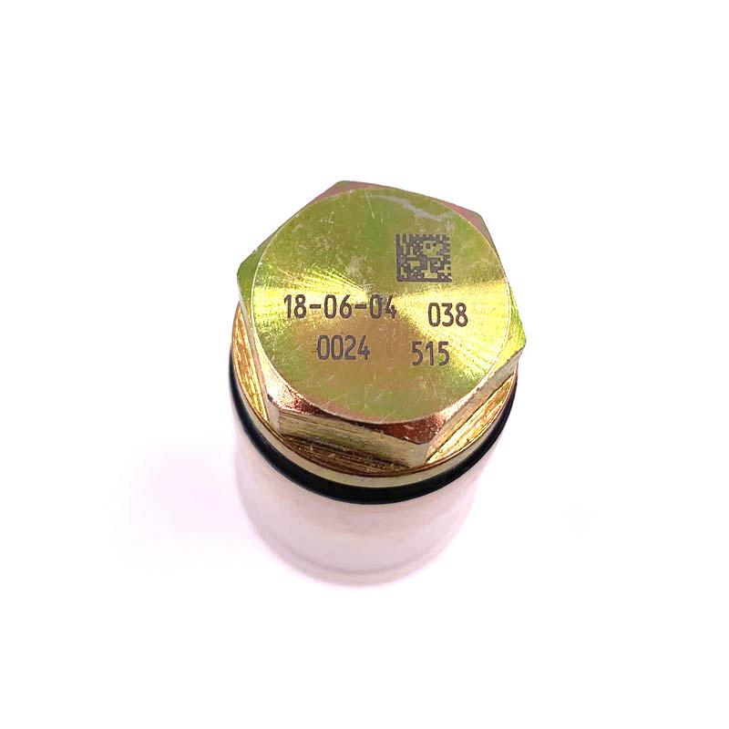Common rail pressure relief valve OEM 1110010011 Fuel injection rail pressure sensor