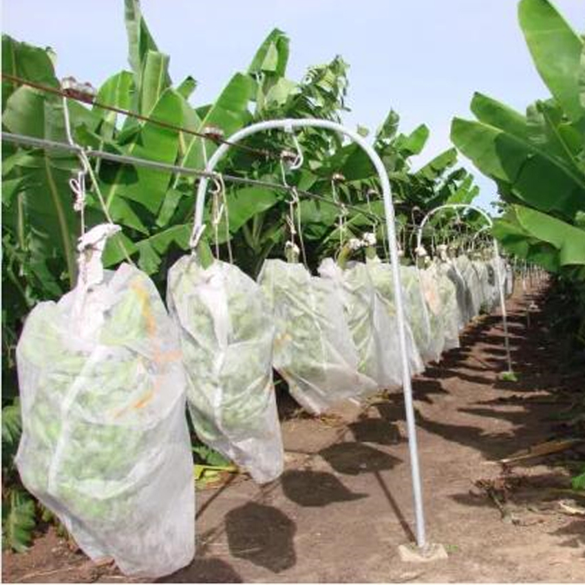 eco packaging bags nonwoven fabric used for fruit bag