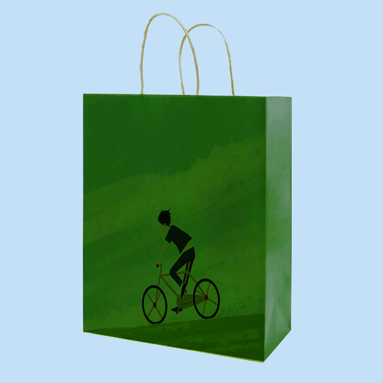 product-eco-friendly multifunction green tea wine flowers paper bags with handle-Dezheng-img-1