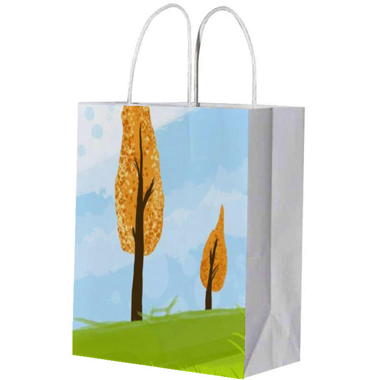 eco-friendly multifunction green tea wine flowers paper bags with handle