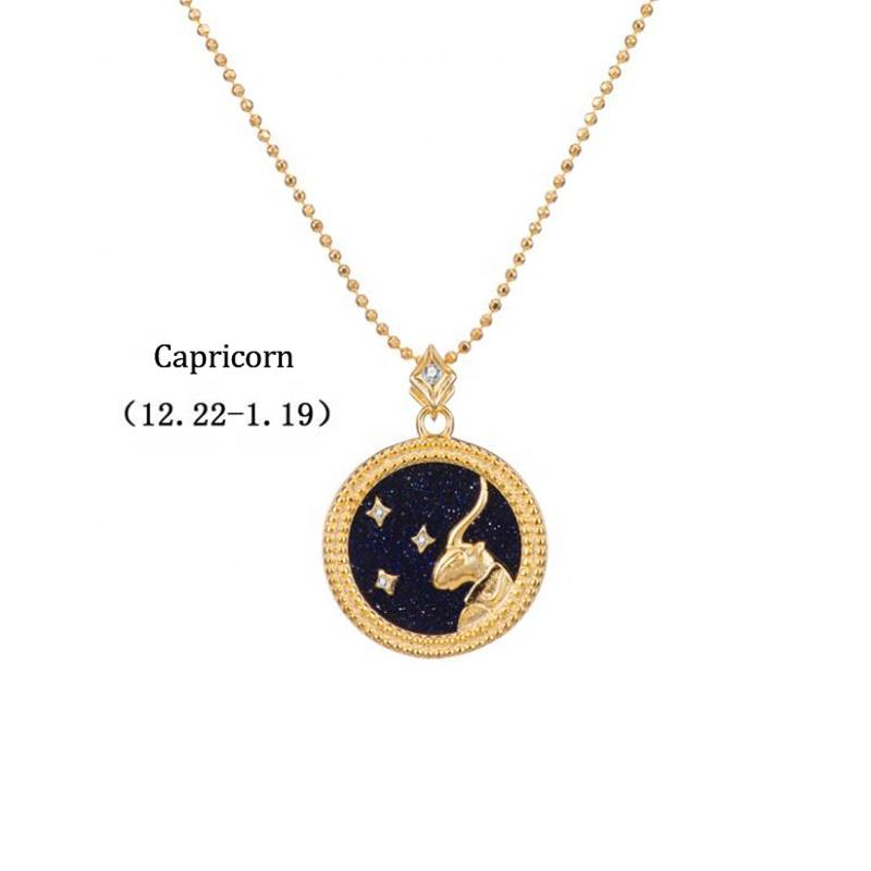 Birthday Jewelry Sign Capricorn 925 Silver Zodiac Charm Necklace