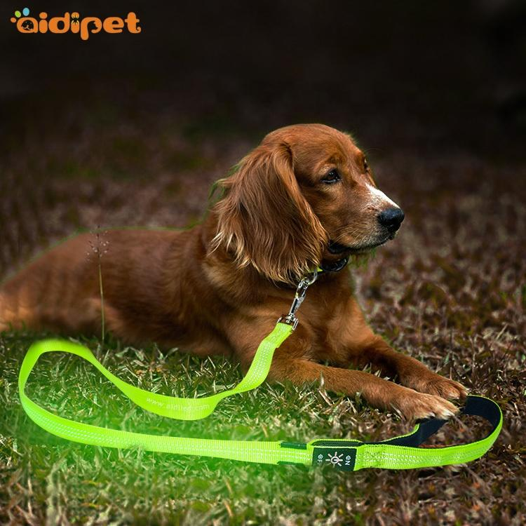 2019 New Trend Pet Supply Factory Flashing Led Dog Lead Cheap Price AIDI Lighted Led Pet Dog LeashWholesale
