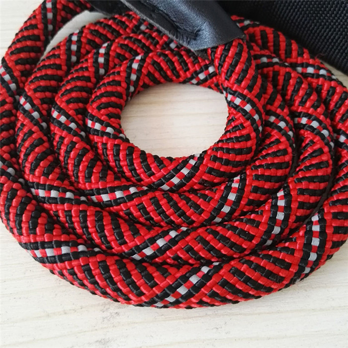 10 mm pet rope dog leash rope for walking dog red blue black with Reflective