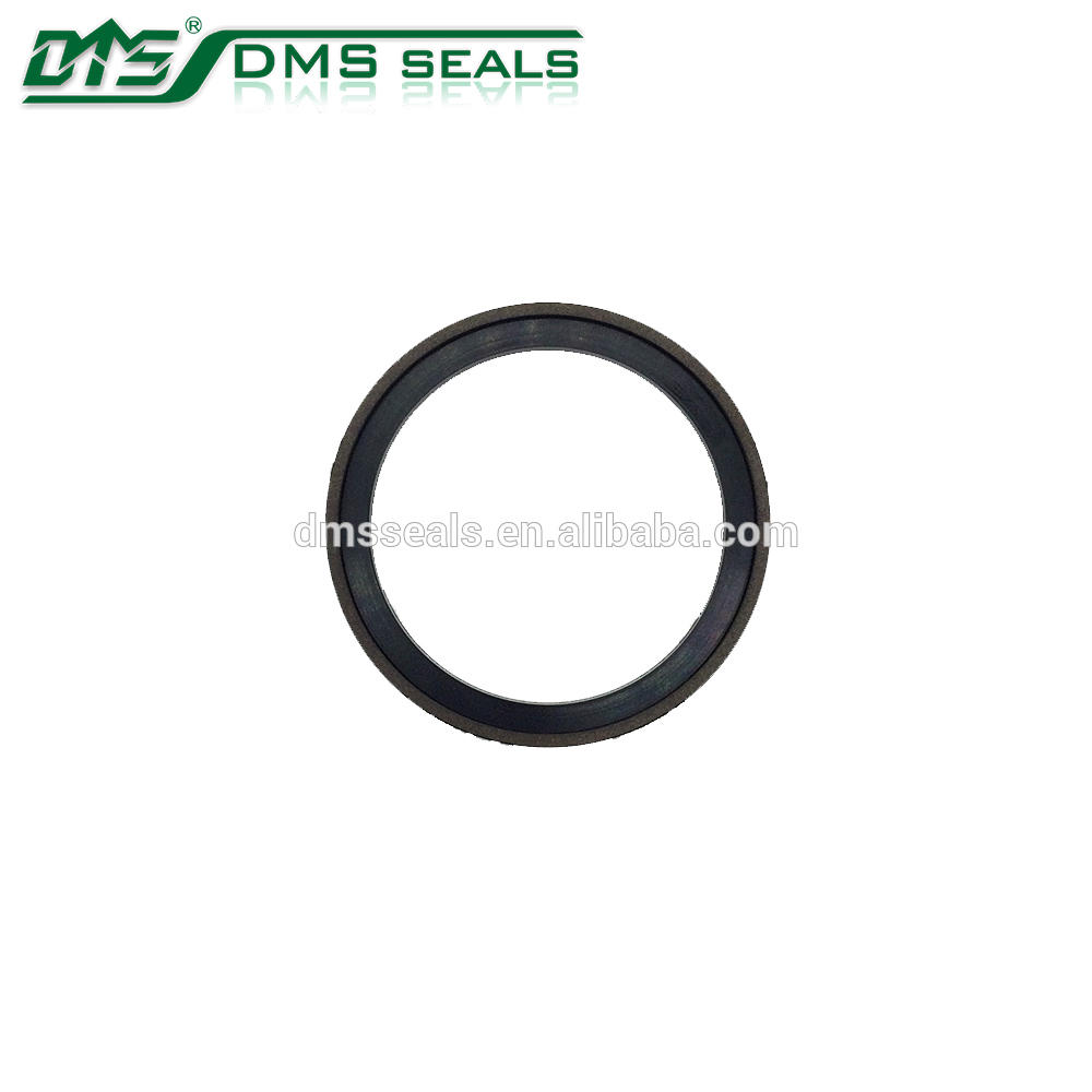 bronze PTFE piston seal for hydraulic cylinder sealing pump mechanical seal SPG