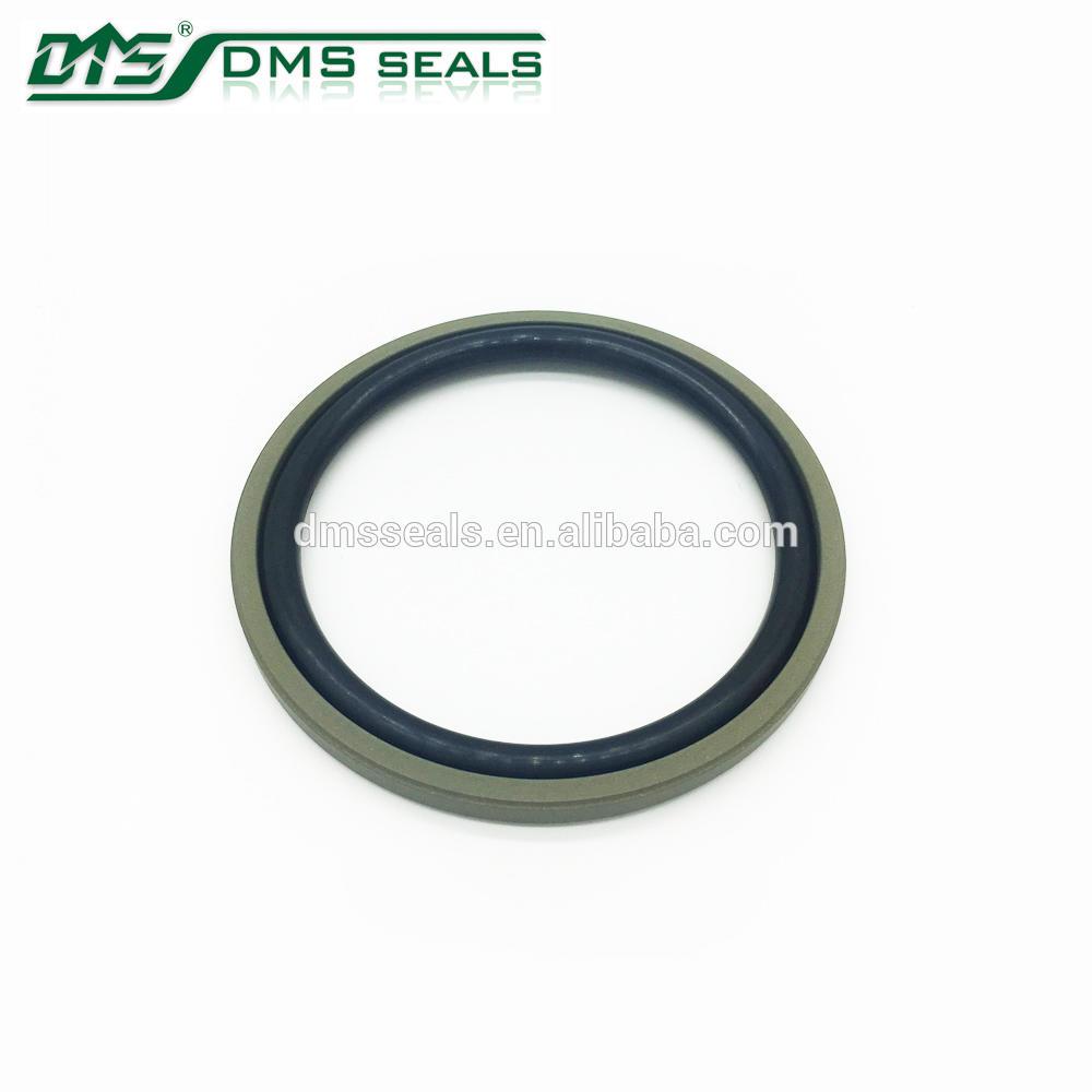 Hydraulic Seals Bronze PTFE Glyd Ring DPT