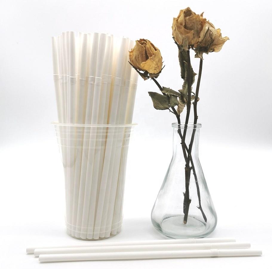 210*6mm FDA Food Safety Eco Friendly Biodegradable Degradable Decomposable Compostable Disposable PLA Straws