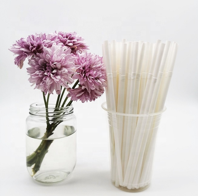 Eco friendly compostable 100% biodegradable plastic drinking PLA straw