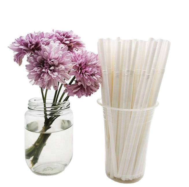 100% Plant Based Compostable Disposable Curved Drinking StrawPLA Biodegradable Straw