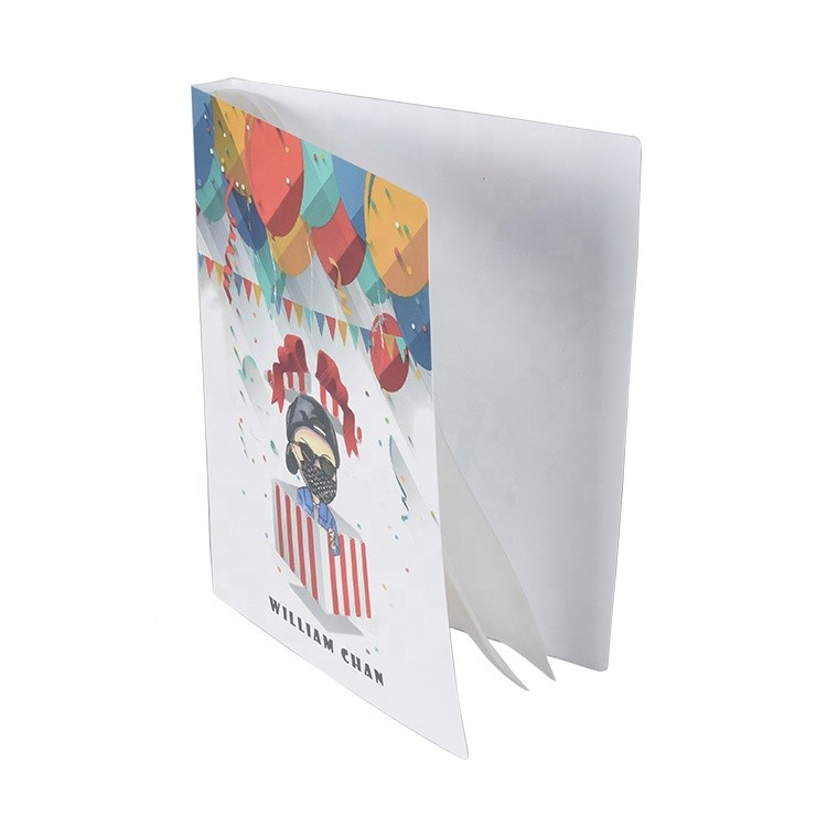 Custom PP Hard Cover Display Folder A4 Clear Presentation Display Book