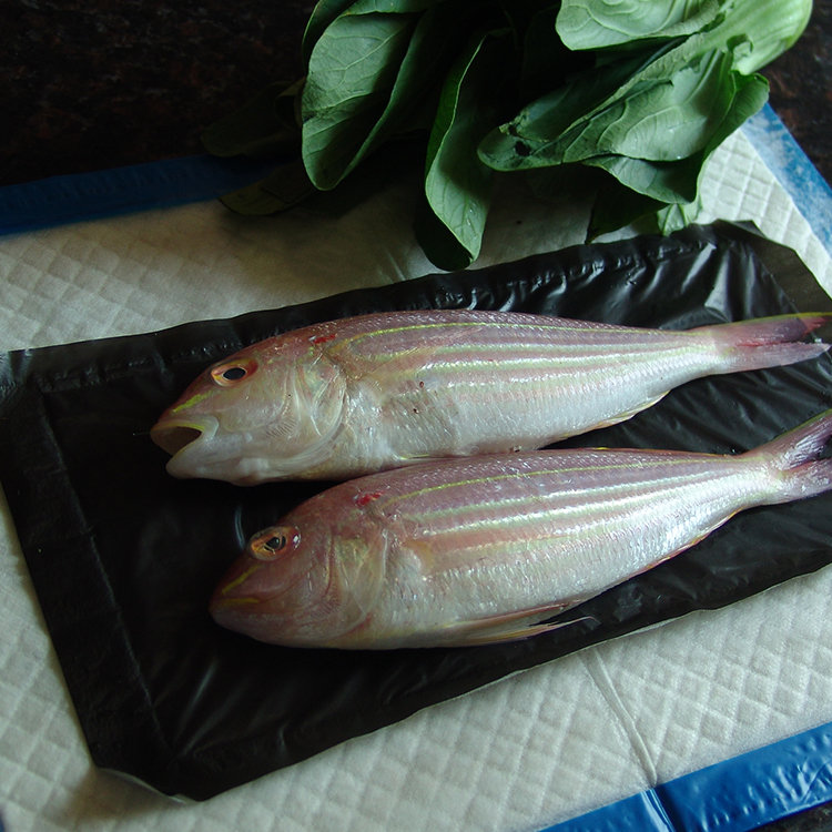 Keep Seafood Fresh Seafood Absorbent Pad