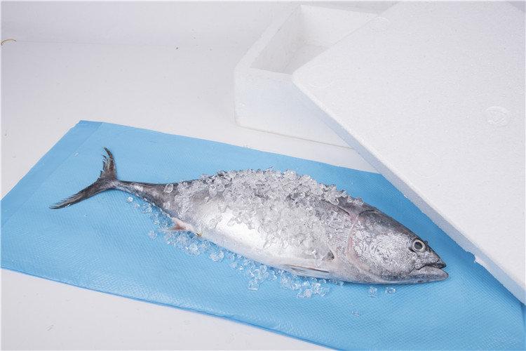 Guaranteed Quality Punch PE Film Seafood Fish Food Absorbent Pad