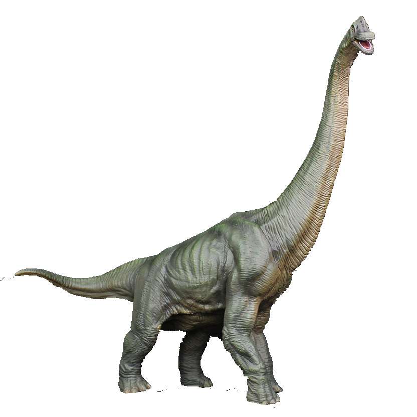 Hot Sale Plastic PVC Jurassic Dinosaur Brachiosaur Figure Model Toys Ancient Animal Figure Gift Toy