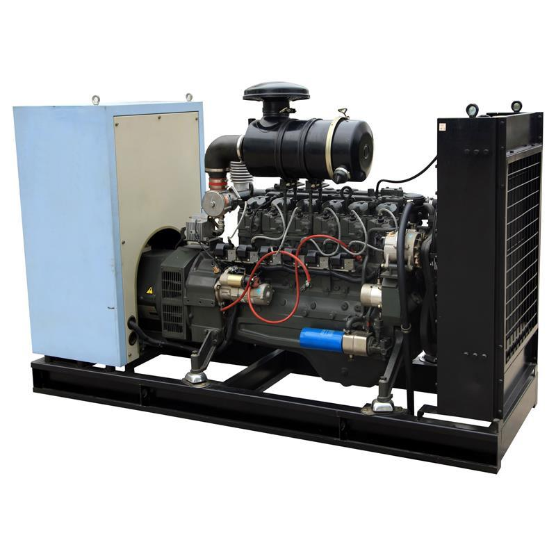 24v Electric Start Container Type Natural Gas Generator Price For Bio Gas Power Plant Generation