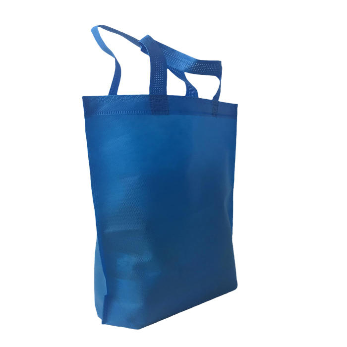 100%PP nonwoven fabric Flat shape loop handle reusable shopping bags