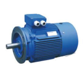 Motor Y3-355m1-8 with Ce Approved