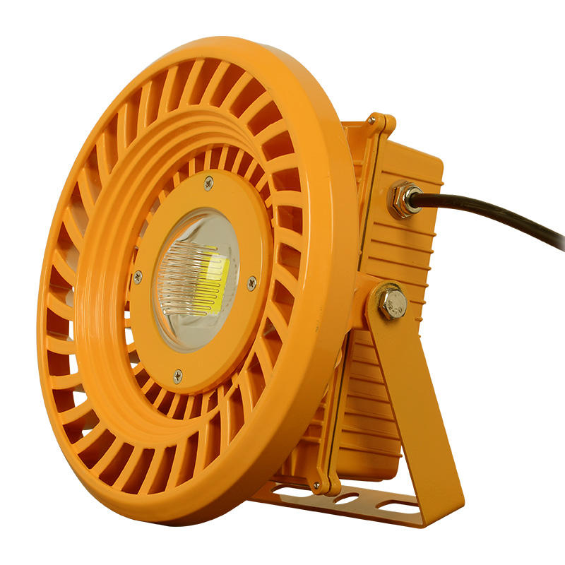 Meanwell driver waterproof 100w led explosion proof flood light