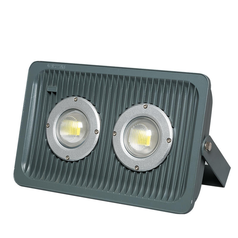 High lumen bridgelux cob 100w multi color led flood light