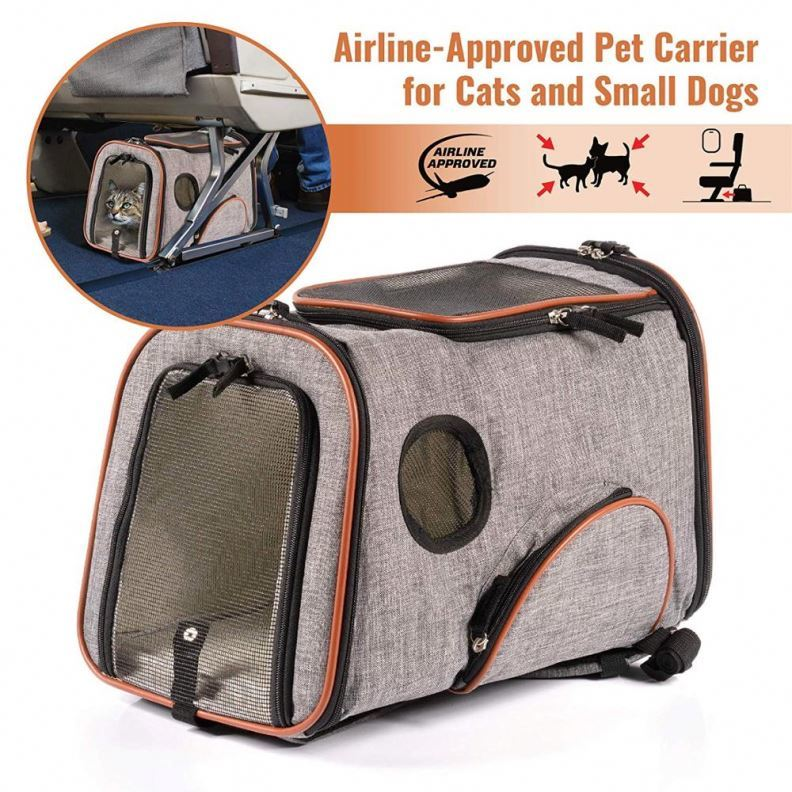 product-Osgoodway Personalized Oxford Foldable Pet Carrier Bag backpack for Small Dogs Cats-Osgoodwa-1