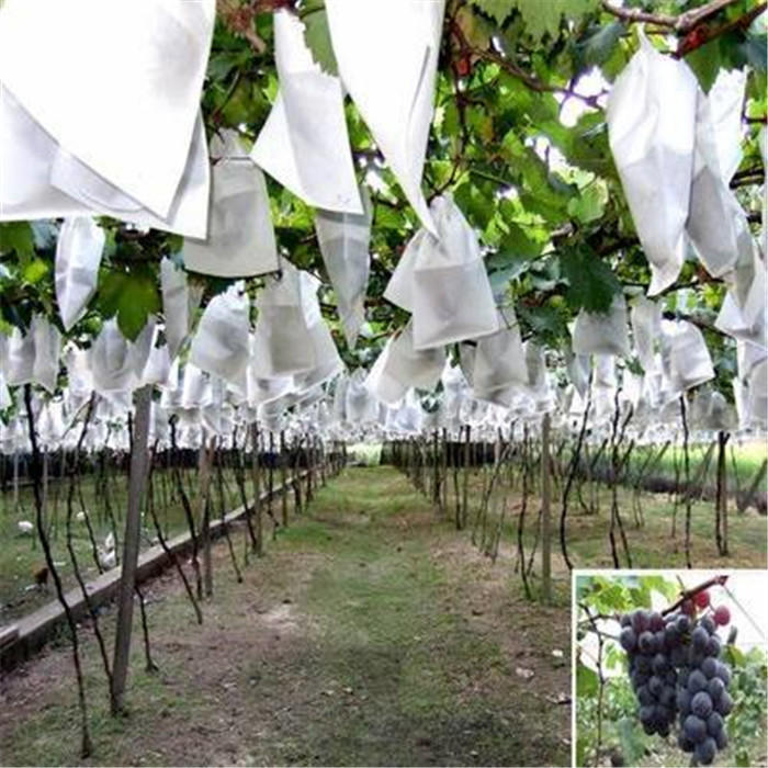 2% UV Agriculture PP Non Woven Landscape Fabric All GSM Various Color