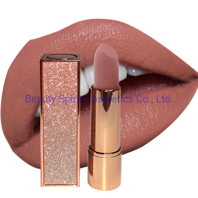 OEM Customized Glitter Lipgloss Cosmetics Makeup Long Lasting Matte Lipstick