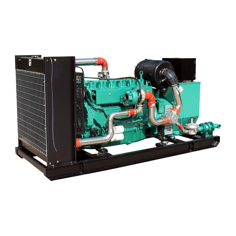 High Efficiency AVR 110kva Biogas Generator Price For Farm Waste