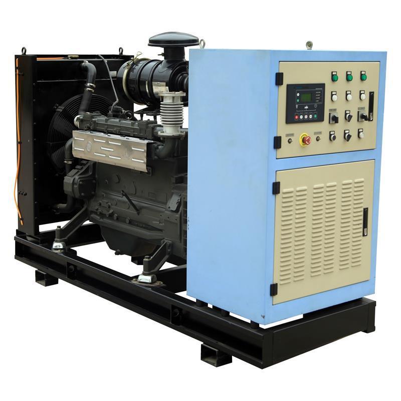 AVR 400v/230v Portable 3-phase Water Cooling Mini Biogas Generator